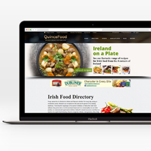 website design cork web design cork